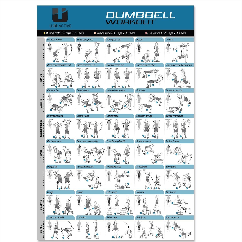 Gran mancuerna entrenamiento y póster de ejercicios (20 x 30) - 40 de las mejores mancuernas ejercicios - incluye - Guía de Entrenamiento ganancia muscular, ...