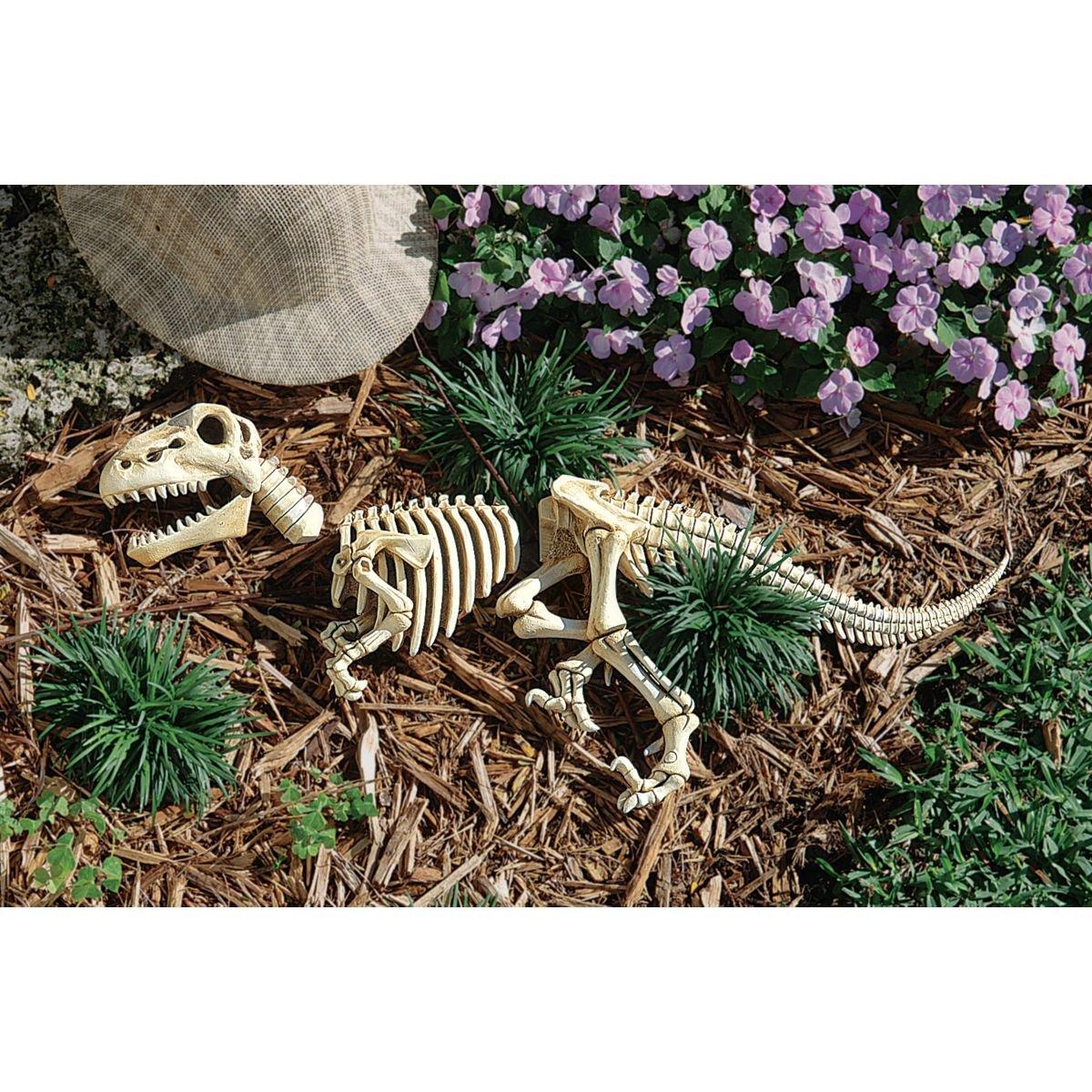 Amazon.com : Design Toscano Raptor Skeleton Garden Sculpture : Skeleton  Gnome : Patio, Lawn U0026 Garden