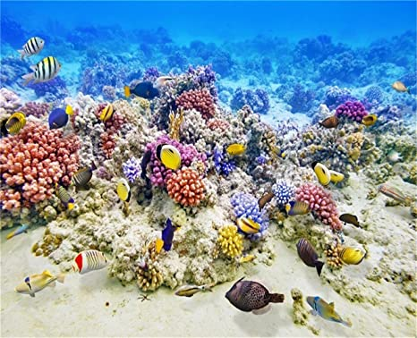 Wallpaper Roll Coral Octopus Fish Ocean Coral Reef Nautical Beach 24in x 27ft