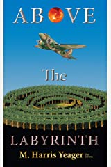 Above The Labyrinth: 2nd edition Kindle Edition