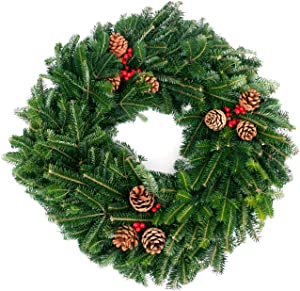 """Van Zyverden 87444 Live Fresh Cut Blue Ridge Mountain Fraser Fir 24"""" with Cones and Berries Holiday Wreath, Green"""