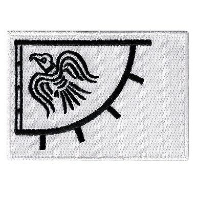 Amazon.com: Raven Banner Viking bordado, diseño de bandera ...
