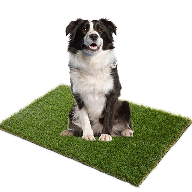 AYOHA 3' x 5' (15 Square ft) Artificial Grass