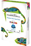 Hammermill Cardstock, 60 lb, 162 GSM, Premium Color Copy, 17 x 11-1 Pack (250 Sheets) - 100 Bright, Made In The USA Card…