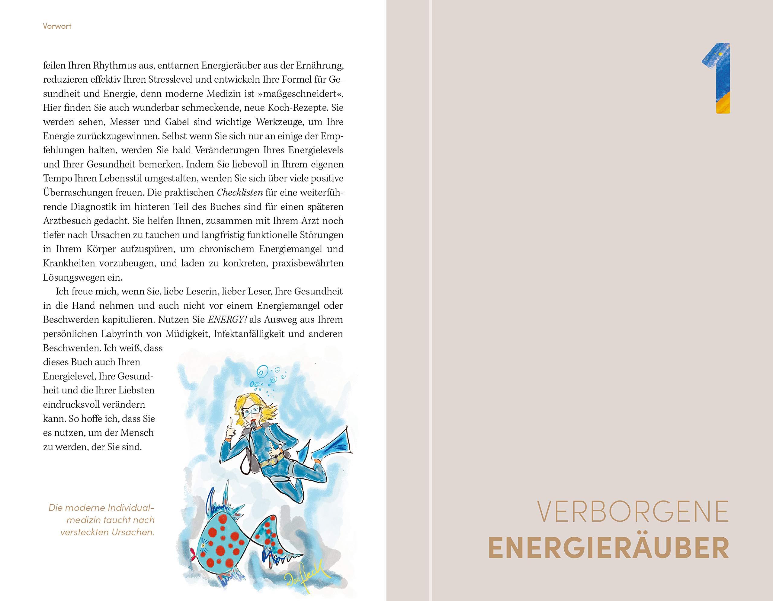 Energy Der Gesunde Weg Aus Dem Müdigkeitslabyrinth Mit 30 Tage Selbsthilfeprogramm Fleck Anne Bücher