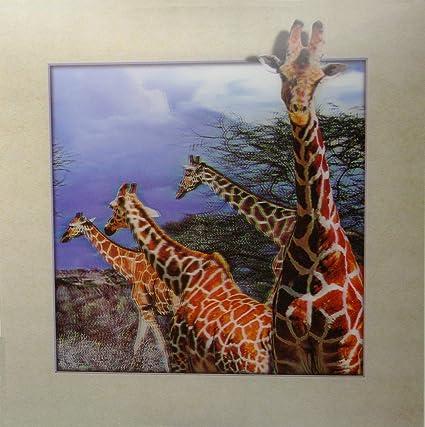 Amazoncom The 3d Art African Giraffe Unbelievable Life Like 3d