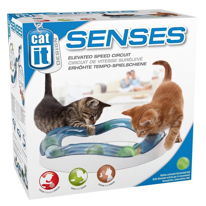 aire de jeux speed circuit avec balle lumineuse pour chat catit ebay. Black Bedroom Furniture Sets. Home Design Ideas