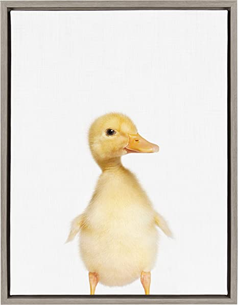 Amazon Com Kate And Laurel Sylvie Duck Framed Canvas Wall Art By Amy Peterson 18x24 Gray Posters Prints
