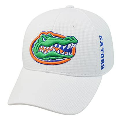 new arrival deff9 5133c Amazon.com   Top of the World Florida Gators Official NCAA One Fit Tow HAT  029911   Sports   Outdoors