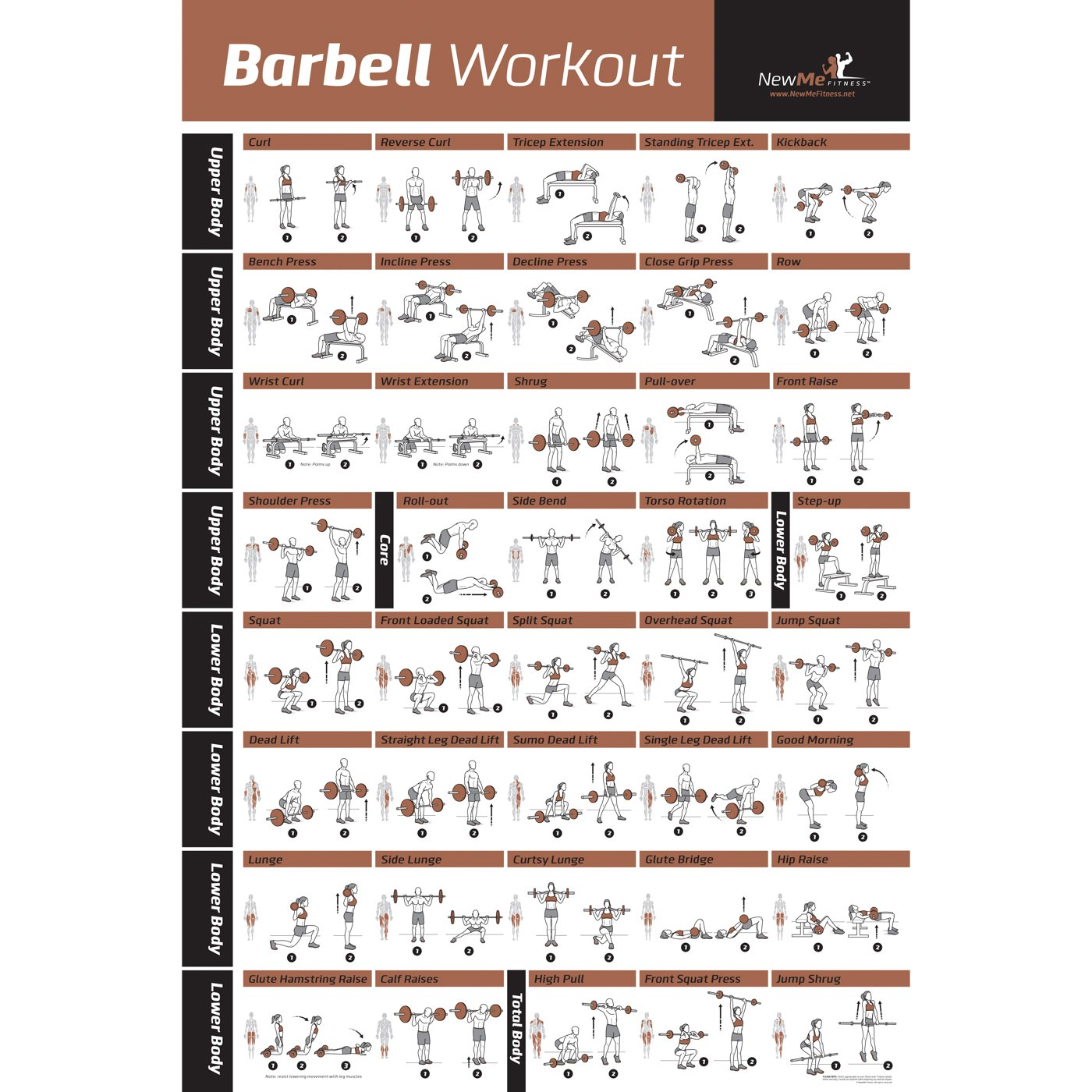 Free Weights Total Body Workout: BARBELL WORKOUT EXERCISE POSTER LAMINATED