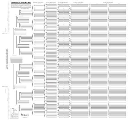 image regarding Free Printable 10 Generation Pedigree Chart identified as TreeSeek 15 Creation Pedigree Chart Blank Genealogy Kinds for Loved ones Background and Ancestry Do the job