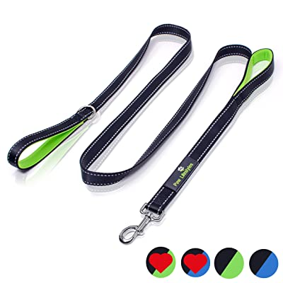 Bungee Dog Leash by OutdoorMaster