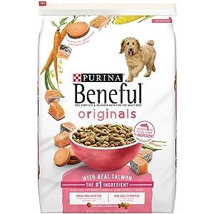 Beneful Healthy Radiance Skin and Coat Dry Dog Food Size: 15.5-lb bag