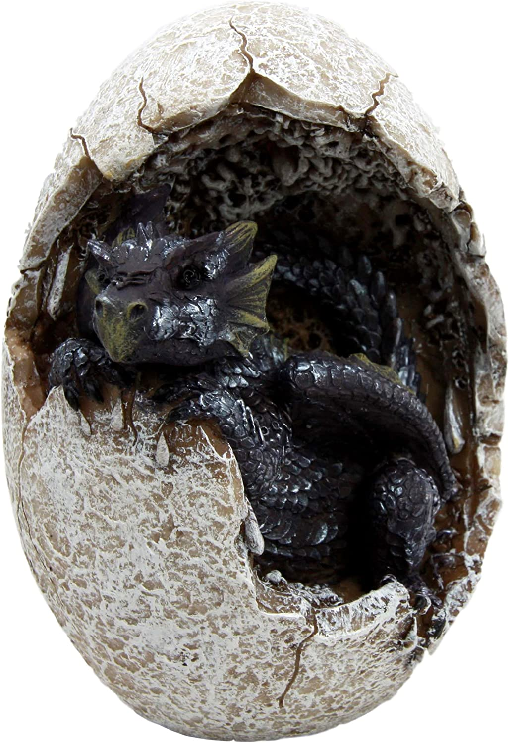 Ebros Gift Fossil Twilight Onyx Dragon Hatchling Breaking Out of Egg Shell Decorative Figurine Dungeons and Dragons Collectible Figurine Museum Like Eggs Decor Medieval Renaissance Theme