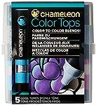 Kit 5 Color Top, Chameleon, Ct4504, Frias