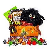 'Bugs and Kisses' Halloween Candy Chocolate Hershey Kisses Jack O' Lantern Gift Basket