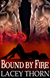 Bound by Fire (Demon Chronicles, Book One) (Paranormal Multiple Partner Romance) by Lacey Thorn