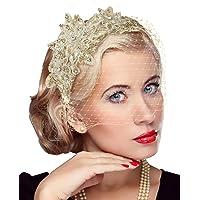 Zivyes Birdcage Veil Fascinator Headband with Veil Funeral Wedding Mesh Face Veil Headband for Women
