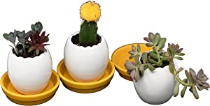 Ceramic Planters for House Plants-Plant Pots Set for Indoor & Outdoor Use (Eggs) by Arad
