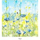 Flowers [Analog]
