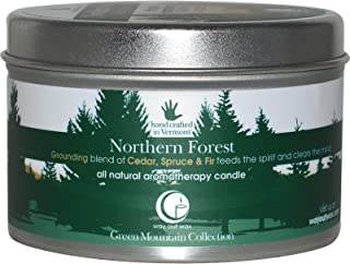 product image for Way Out Wax Candle Travel Tin Northern Forest Large, 1 EA