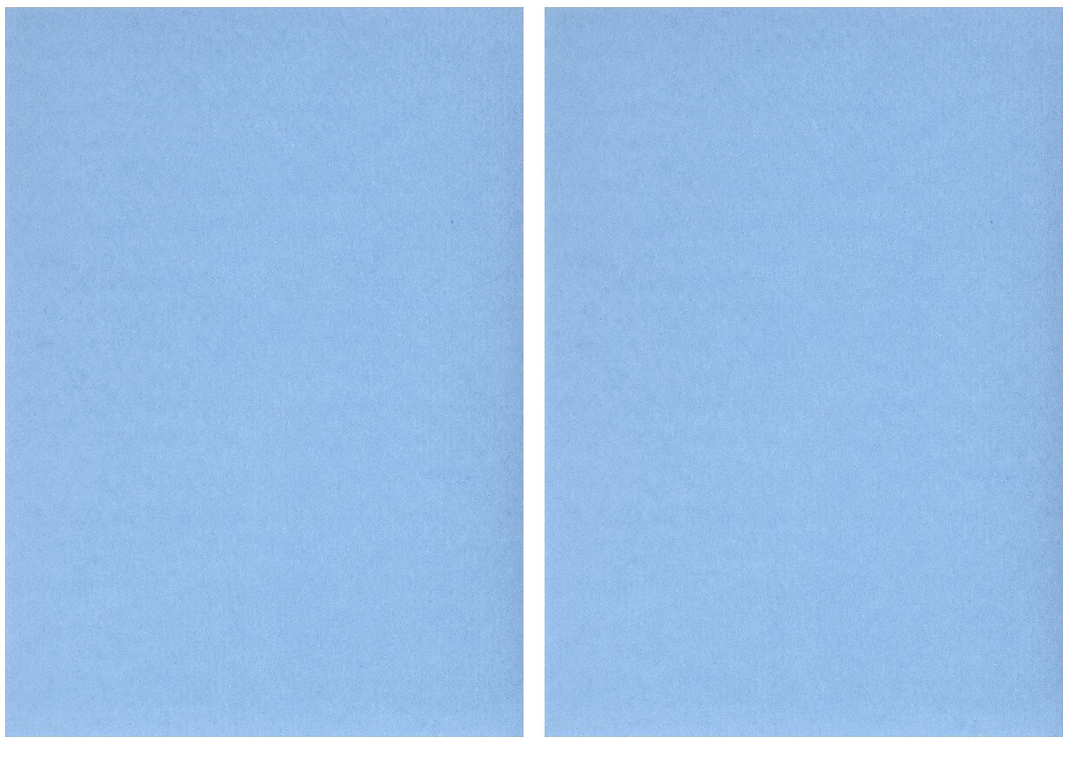 Nature Print Printing Paper, Sun Activated, 5 x 7 Inches, Pack of 40 ((Set) of 2)