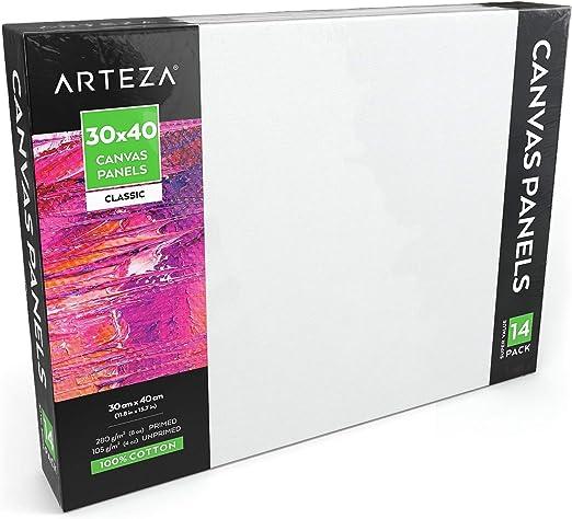 Arteza Paneles de lienzo para pintar cuadros | 30x40 cm | Pack de 14 | 100% algodón | Imprimación sin ácidos | Lienzos grandes para artistas profesionales, aficionados y principiantes: Amazon.es: Hogar