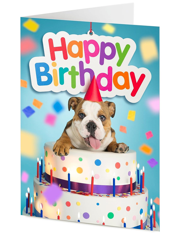 bulldog Inglés cachorros gigante surge de tarta de ...
