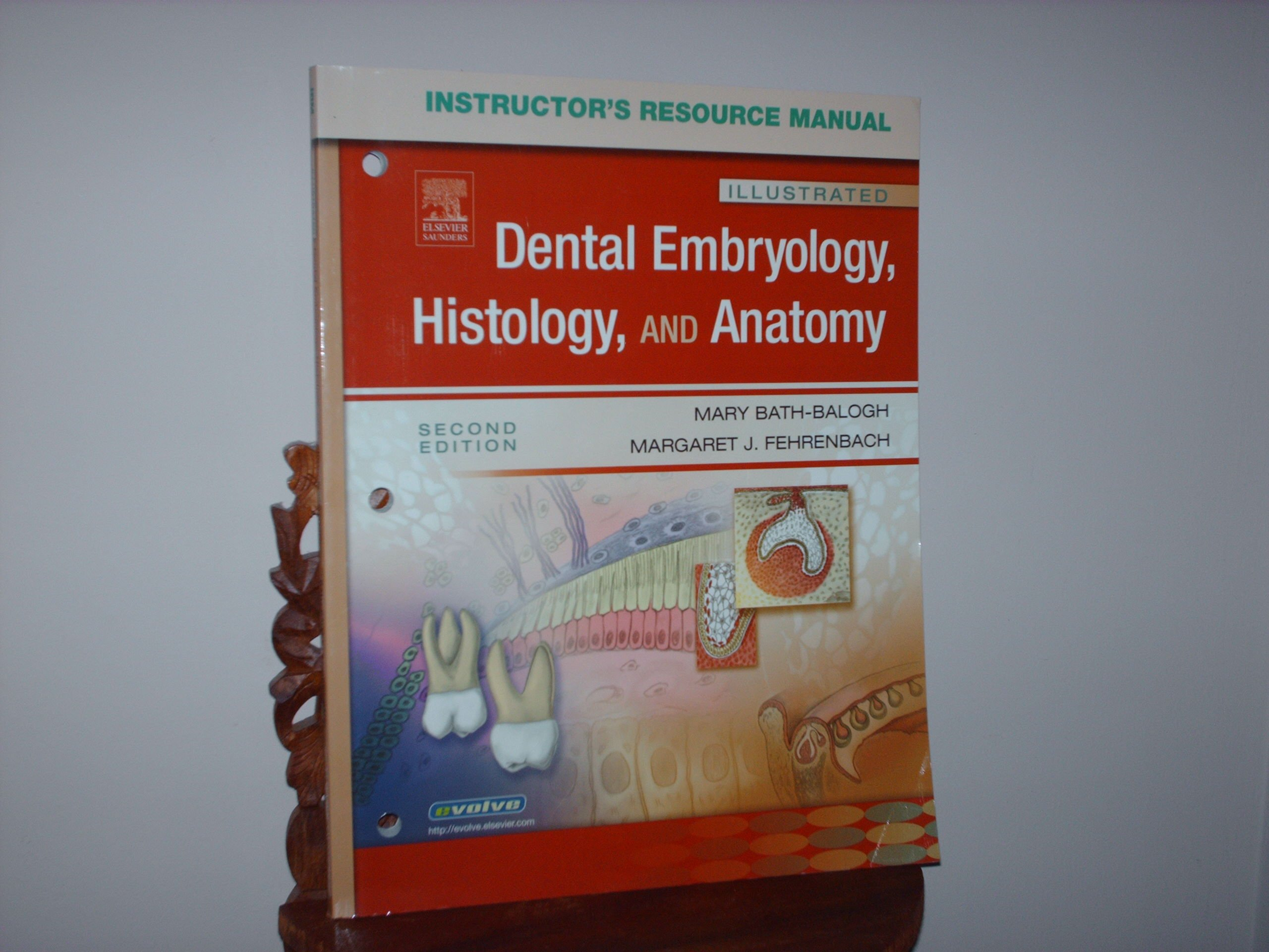 Instructor\'s Resource Manual for Illustrated Dental Embryology ...