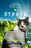 Strays: A Lost Cat, a Homeless Man, and Their