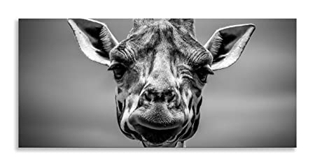 Giraffe Art Black White Animal Kingdom Canvas Wall Panoramic Print For Living Room Bathroom Bedroom