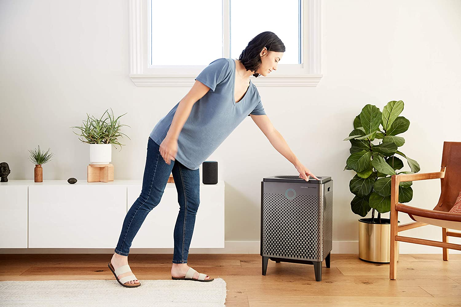 Best Air Purifier For Dust Removal in 2020: Reviews & Buying Guide 11