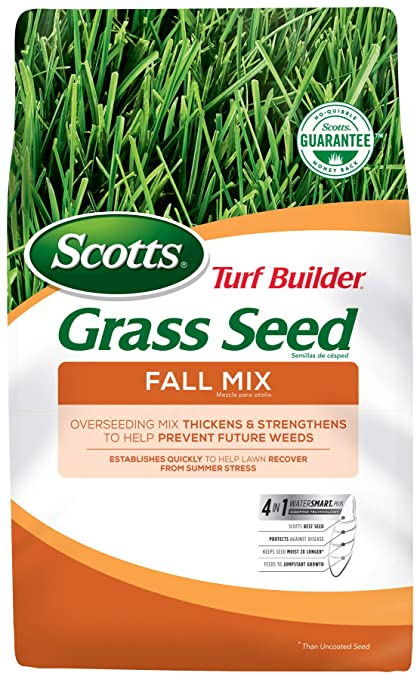 When To Plant Grass Seed In Fall