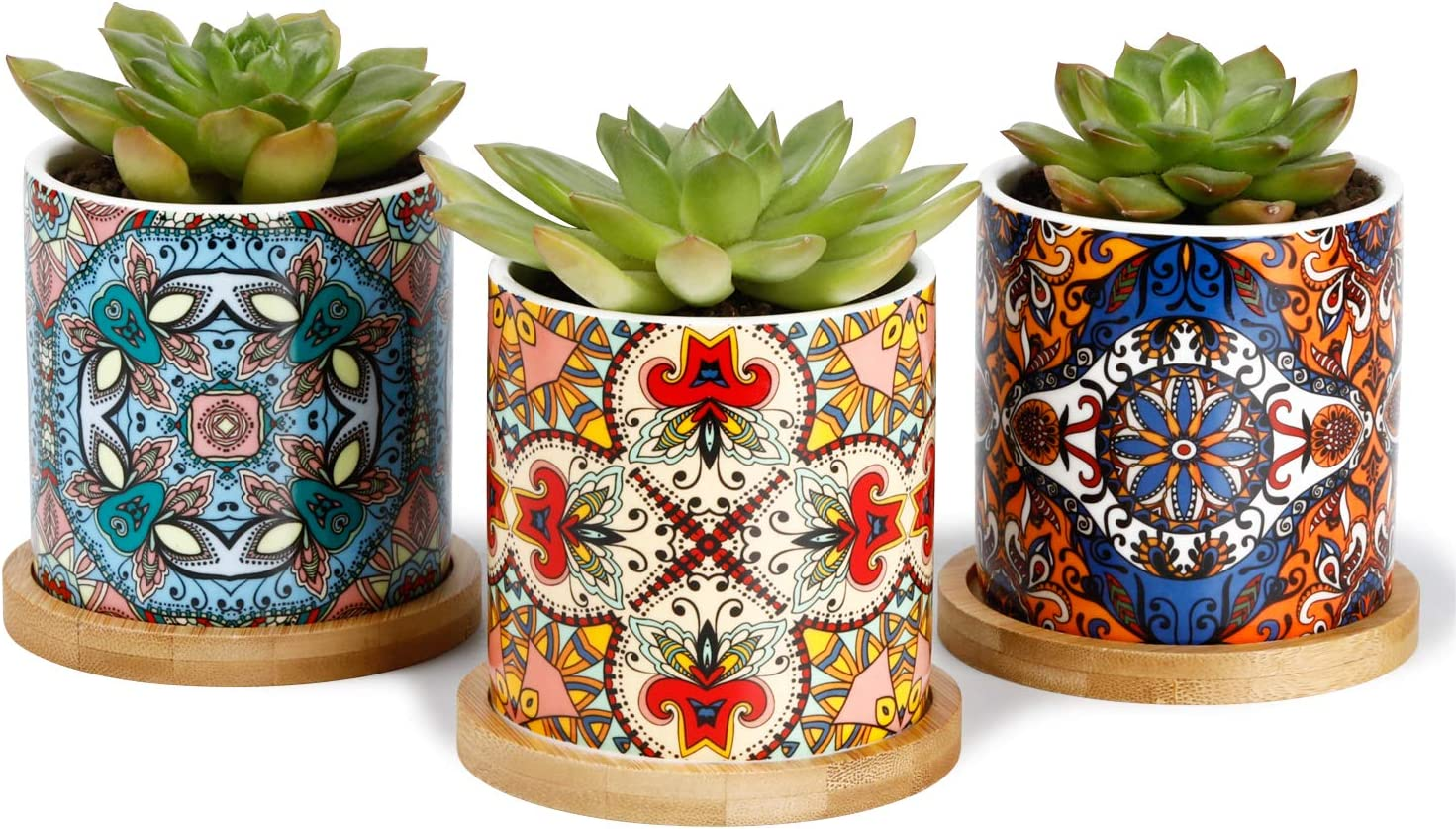 Greenaholics Succulent Pots - 3 Inch Ceramic Plant Pots with Bamboo Trays, Great House and Office Decor, Set of 3, Multi-Color