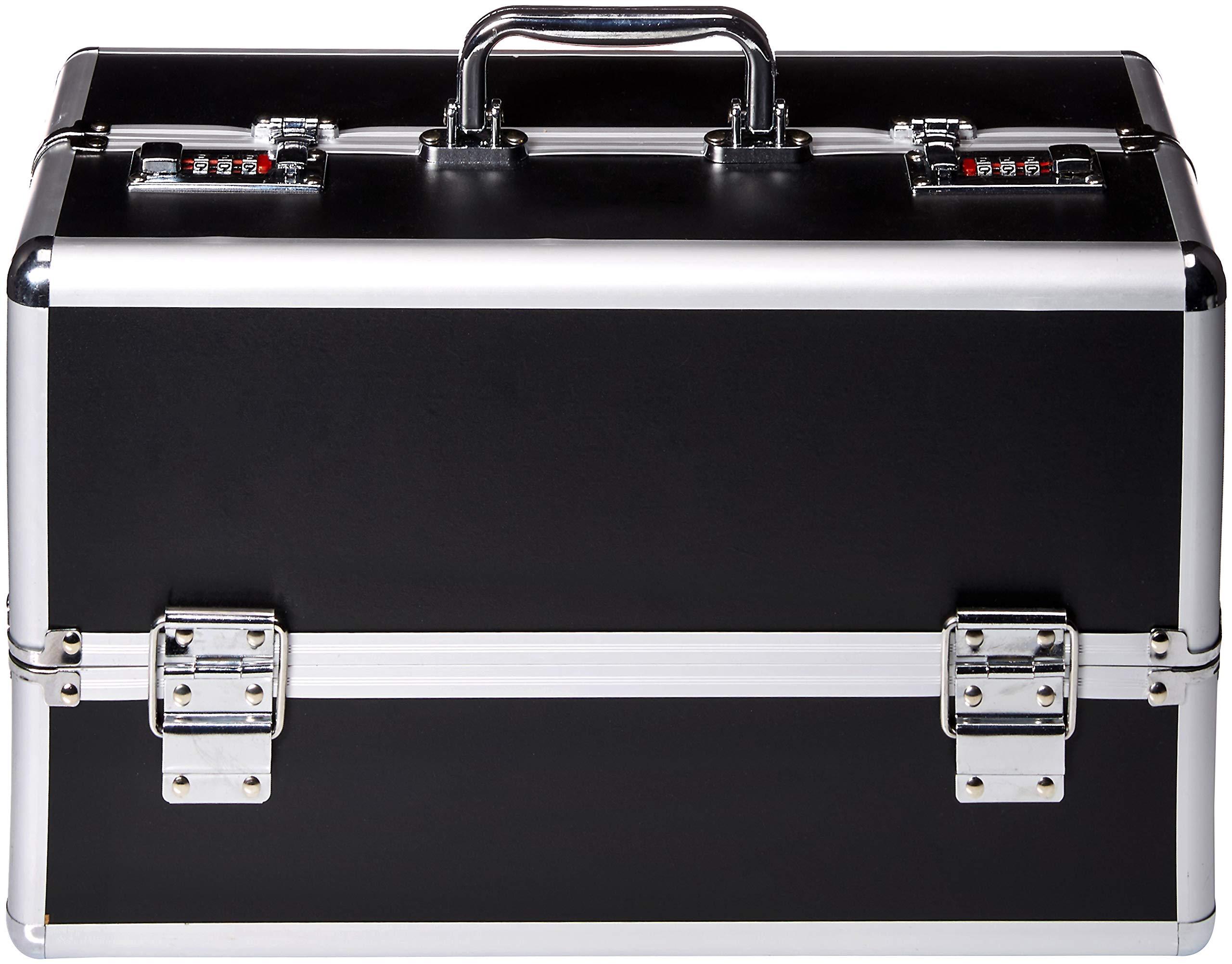 BMS Enterprises Lockable Vibe Case Novelty, Black, Large, 12.17 Pound