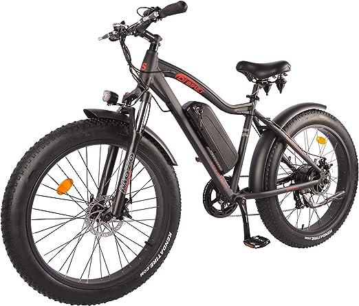 DJ Fat Bike 750W 48V 13Ah Power Electric Bicycle
