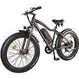 DJ Fat Bike 750W 48V 13Ah Power Electric Bicycle, Matte Black, LED Bike Light, Suspension Fork and Shimano Gear,