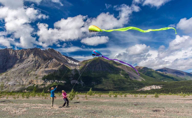 Prism Bora Single-line Parafoil Kite