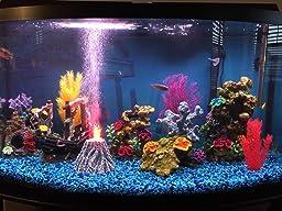 Best Way To Apply Aquarium Background
