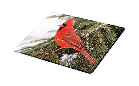 c9757a61fd98f Lunarable Cardinal Cutting Board, Northern Cardinal Bird Standing on a Pine  Tree Branch in Winter Season, Decorative Tempered Glass Cutting and ...