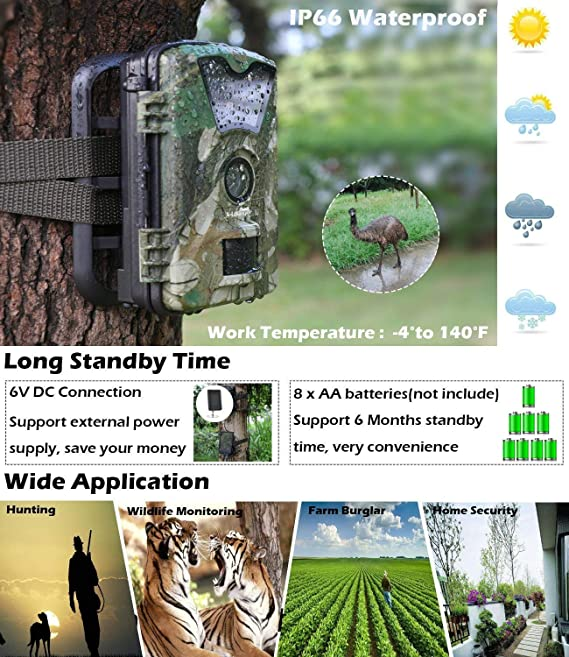 Nikon FAA410NA - Cámara réflex analógica, color plateado: Amazon.es: Electrónica
