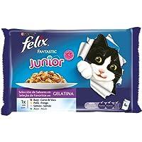 Purina Felix Fantastic Junior Selecciones Favoritas - Pack de 10 x [4 x 100 g] - Total 4000 g