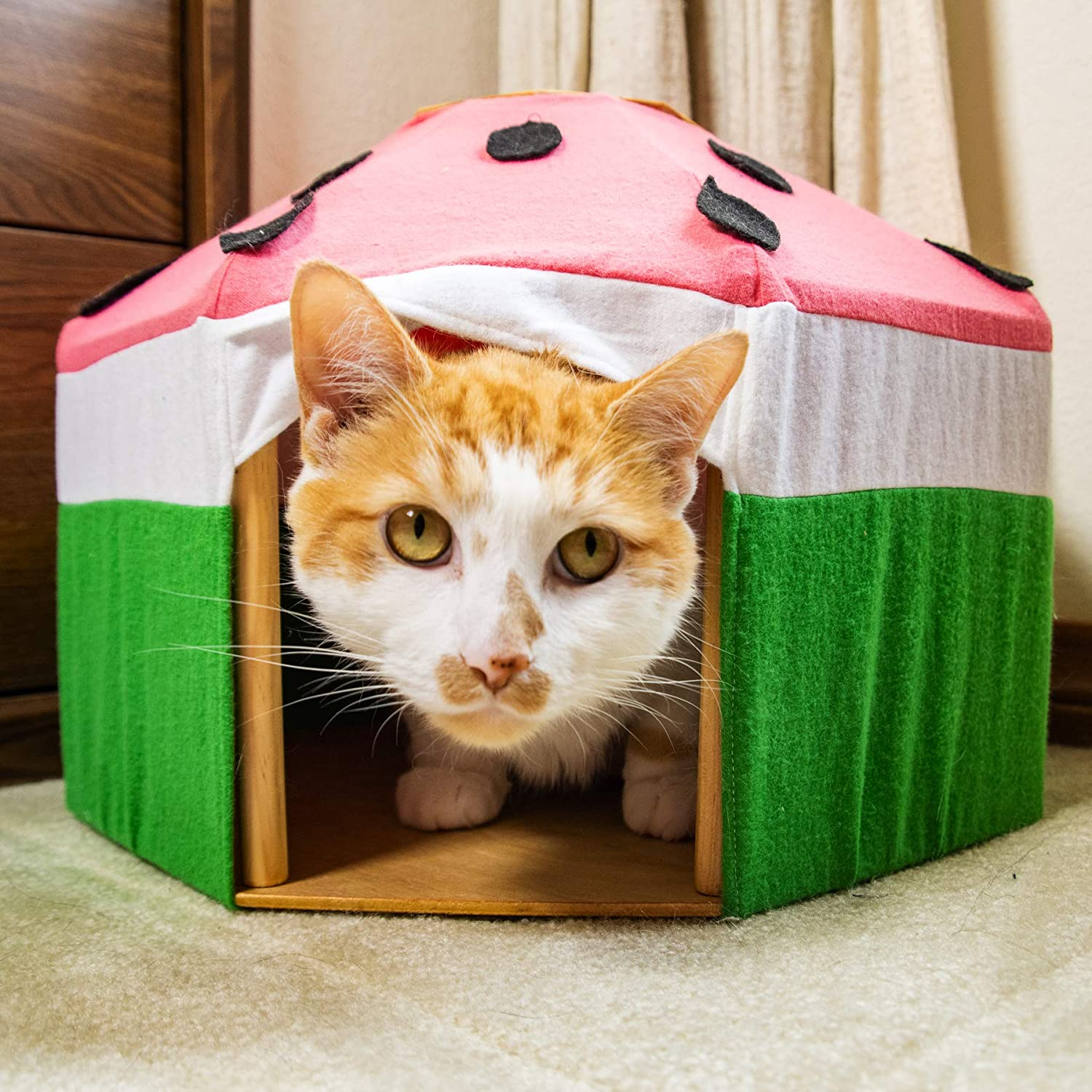 Watermelon pet tent for cats Handmade Pet Yurt rabbits and small dogs