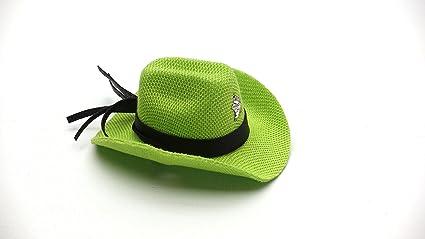 a4a574535efe52 Amazon.com : Carolina Designer Dragons' Bearded Dragon Cowboy Hat ...