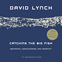 Catching the Big Fish: Meditation, Consciousness, and Creativity: 10th Anniversary Edition book cover