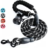 Toozey 5 FT Dog Leash, Rope Leash with Comfortable Padded Handle and Reflective Threads, Heavy Duty Braided Leash for Small Medium Large Dogs