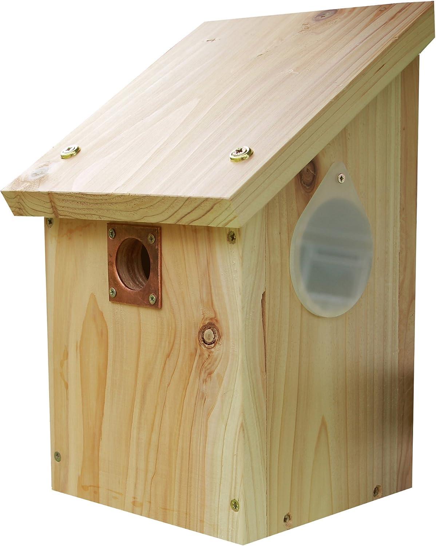 Wildlife World CRNB - Caja Nido para pájaros