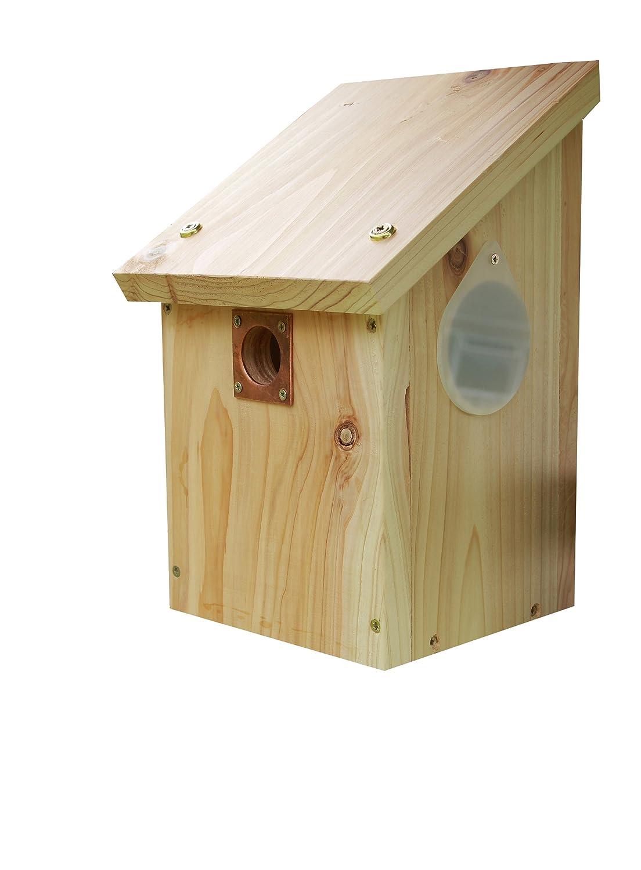 Wildlife World Camera Ready Nest Box CRNB