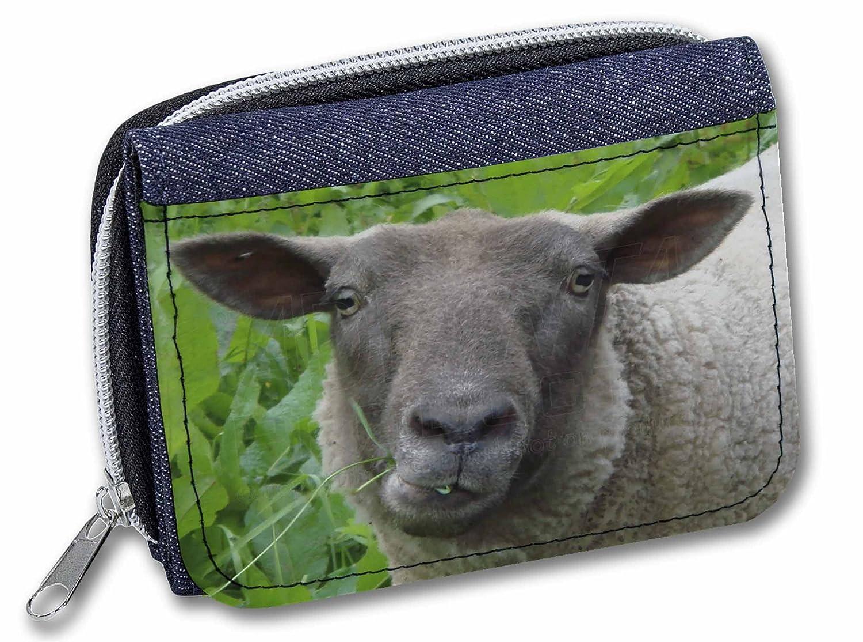 Advanta - Denim Wallet Tarjetero, azul vaquero (Azul) - ASH-3JW: Amazon.es: Equipaje
