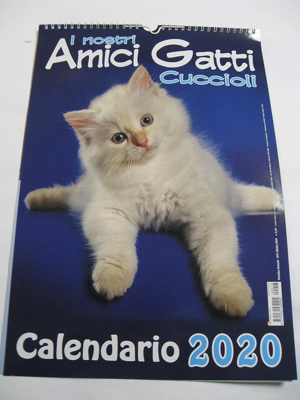 GAMMA 3000 - Calendario de Pared Vertical, 42 x 29 cm, diseño de Cachorros de Gatos: Amazon.es: Deportes y aire libre